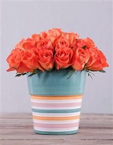 flowers: Orange Roses in Striped Ceramic!