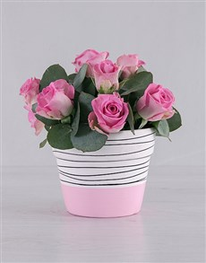 gifts: Pretty in Pink Roses!
