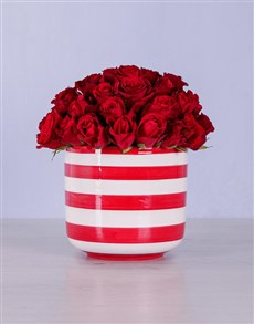 flowers: Red Roses in Candy-Striped Pot!