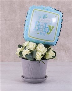 flowers: Baby Boy White Roses in Pot!
