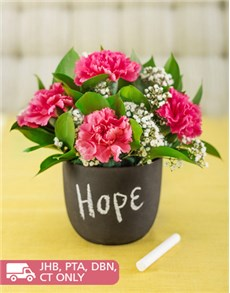 flowers: Pink Carnations in a Chalkboard Vase!