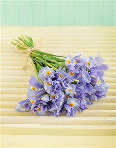 gifts: Light Blue Iris Bouquet!