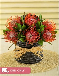 flowers: Pincushion Proteas in a Woven Basket!