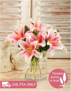 flowers: Cylinder Vase of Stargazer Lilies!