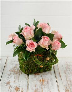 flowers: Pink Roses in a Moss Basket!