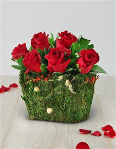 flowers: Red Roses in a Moss Basket!