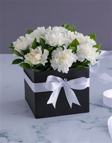 gifts: A Box of White Carnations!