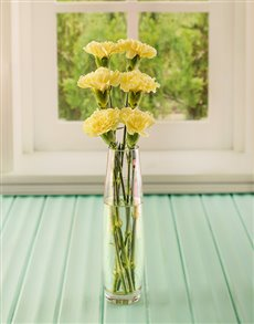 flowers: Simply Six Yellow Carnations!