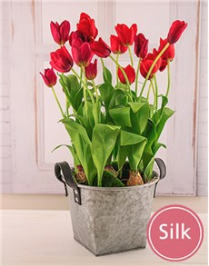 flowers: Silk Tulip Potted Red Mix!