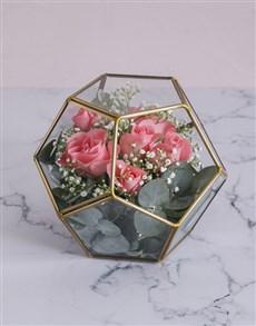 flowers: Star Sapphire Roses!