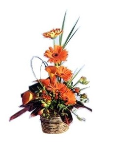 flowers: Orange Opiance Flower Treat!