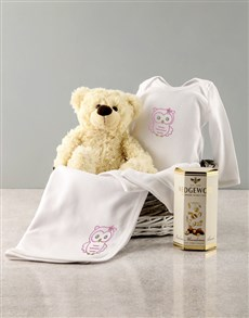 gifts: Baby Girl Seven Piece Owl Gift!