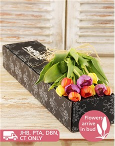 flowers: Tulips in a Gift Box!
