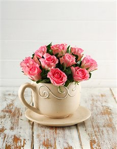 flowers: Pink Roses in a Teacup!