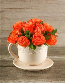 flowers: Orange Roses in a Teacup!