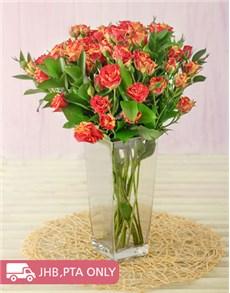 flowers: Kenyan Cluster Variegated Roses in Vase!