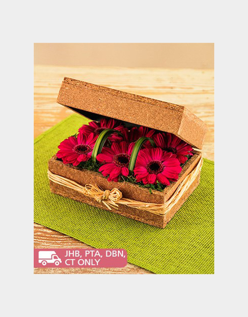 colour: Pink Gerberas in a Box!