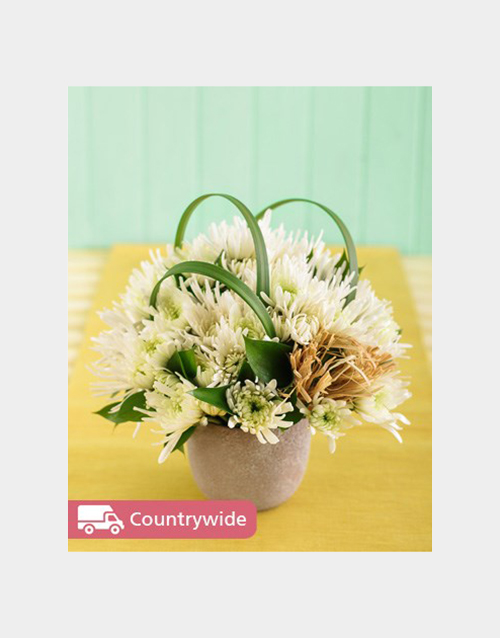 good-luck: White Daisies in a Pottery Vase Petite!