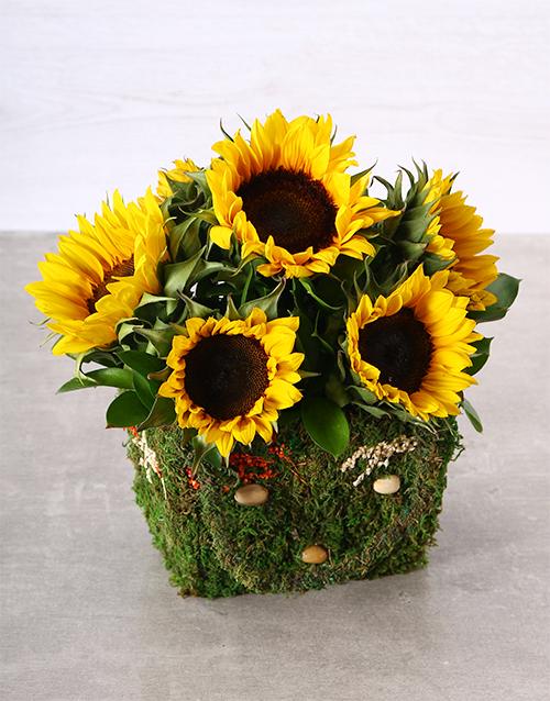 sunflowers: Mystical Sunflower Moss Basket!