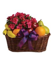 Here's a tasteful gift for any occasion. Fruit and