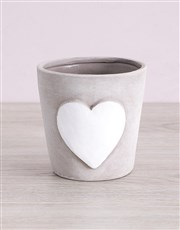 Maroon Chrysanthemum in Heart Pottery