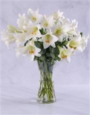 A vase of elegant white St. Joseph lilies. A very