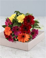 Elegant 12 mini gerberas in a bouquet, filled with