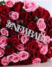 New Baby Red and Pink Roses