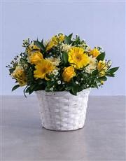 Shed Light Flowers in Basket
