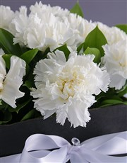 Formal Carnations in a Box