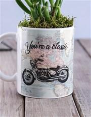 Classic Succulent Mug
