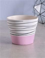 Pink Cyclamen in Striped Ceramic Pot
