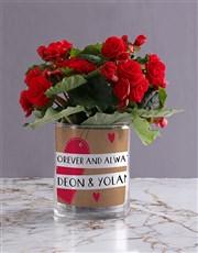 Personalised Begonia Love Photo Vase