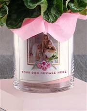 Cerise Cyclamen In A Photo Vase