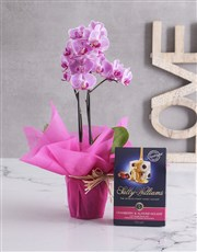 Love Grows Here Orchid Crate