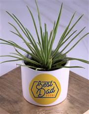 Best Dad Ever Succulents