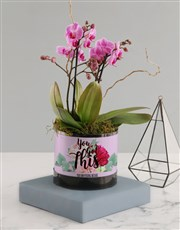 You Got This Pink Midi Orchid