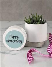 Happy Birthday Succulent in Hatbox