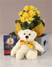 Yellow Begonia Bliss Heart Crate