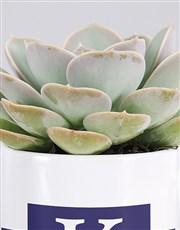 Personalised Name And Surname Mug Succulent