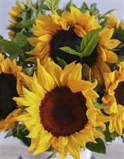 Sunflowers In A Black And White Vase