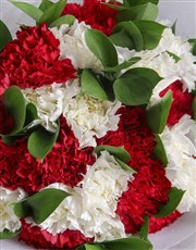 Striking Red and White Carnations