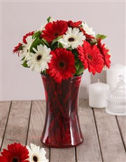 Red and White Love Gerbera Daisies in Red Vase