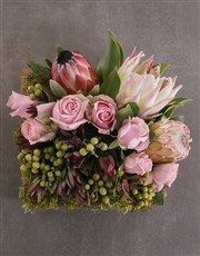 Mixed Proteas in Wooden Crate