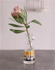 Single Protea in Milk Bottle