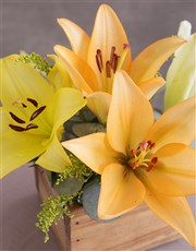 Wooden Variety Lily Blossoms