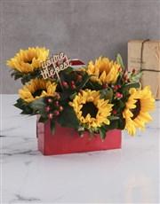 The Best Sunflower Box