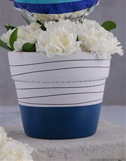 Thank You Carnations In A Pot