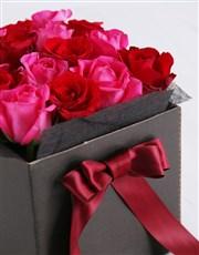 Cerise Rose Blossoms