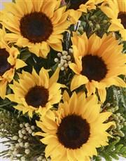 Waterfall Sunflower Arrangement